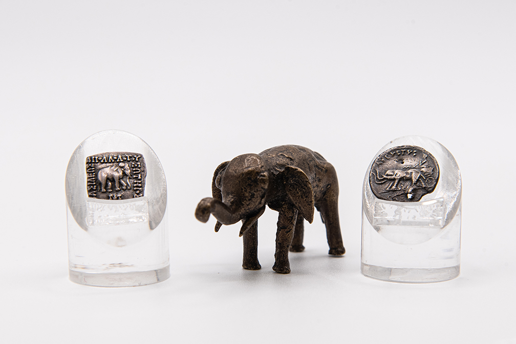 Ancient elephant coins with a brass African elephant weight from the Collection of Nickle Galleries. Photo: Brittany DeMone.