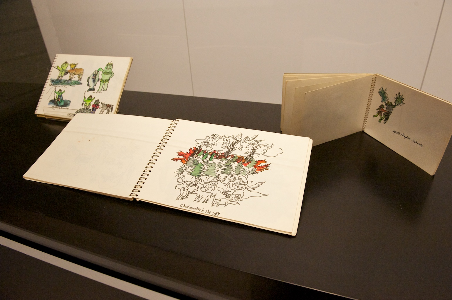 FINE LINES: DRAWINGS FROM THE NICKLE COLLECTION AND THE MACKIE DONATION